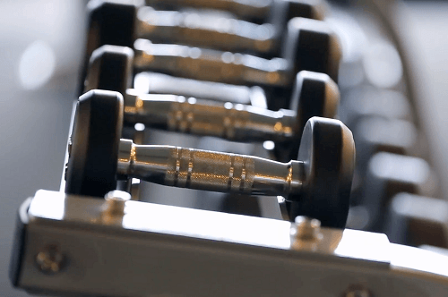 Dumbbells In Gym